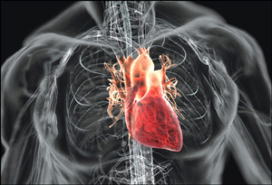 PPMD Webinar Takes In-depth Look at MD Cardiac Disease and Recent Research Efforts