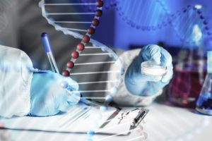 Gene that May Modify DMD Severity Identified, May Be Target for New Therapies