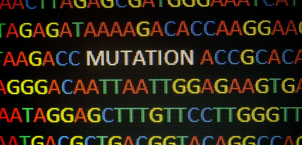 Aberration in RNA Processing Leads to Development of Congenital Myotonic Dystrophy, Study Finds