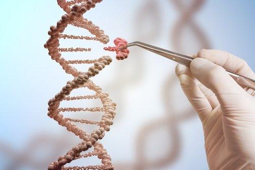 New gene editing strategy