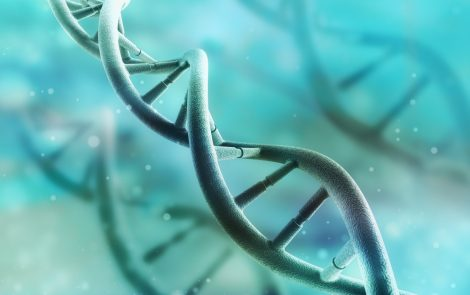 PPMD Names PerkinElmer to Conduct Genetic Tests for Its Decode Duchenne Program