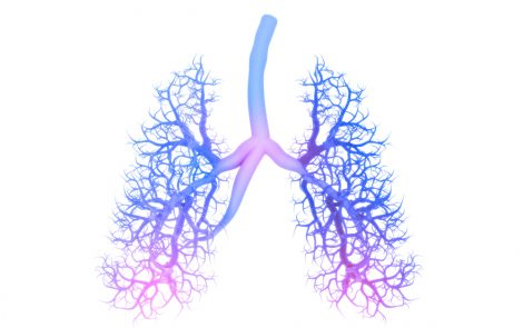 Long-term Treatment with Puldysa Reduces Lung Function Decline in DMD Patients, Study Shows